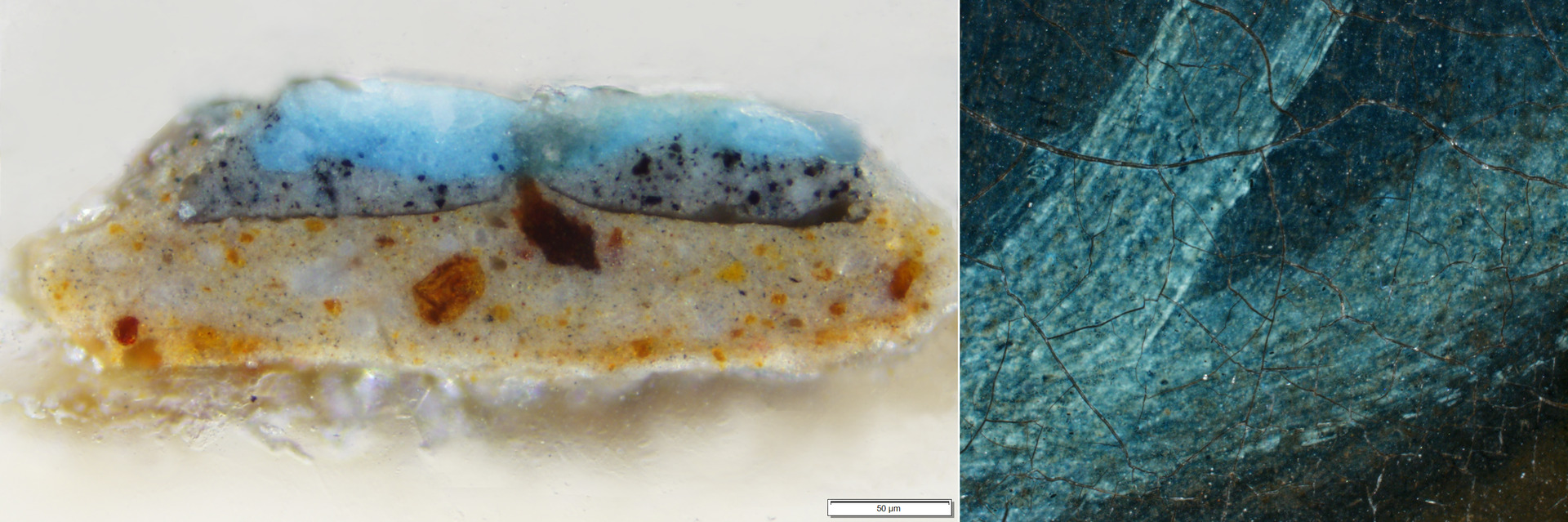 Left: Cross section taken from B1970.1 where analysis has identified the pigment Prussian Blue. Right: Microphotograph showing the area of the blue coat in the painting from which the sample was taken. Photos by Jessica David