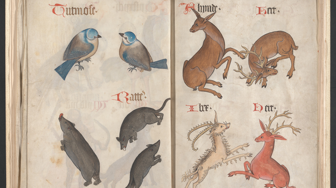 Helmingham herbal and bestiary (detail), circa 1500, folios 16v-17r, Yale Center for British Art, Paul Mellon Collection