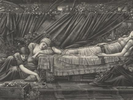 After Edward Burne-Jones, The Rose Bower (detail), 1892, photogravure on paper, Yale Center for British Art, Joseph F. McCrindle, Yale LLB 1948, Fund