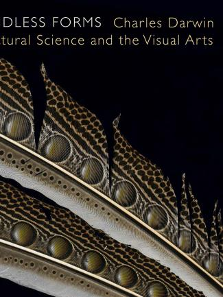 Cover, Endless Forms: Charles Darwin, Natural Science, and the Visual Arts